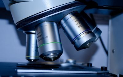 Budget 2020 – funding science